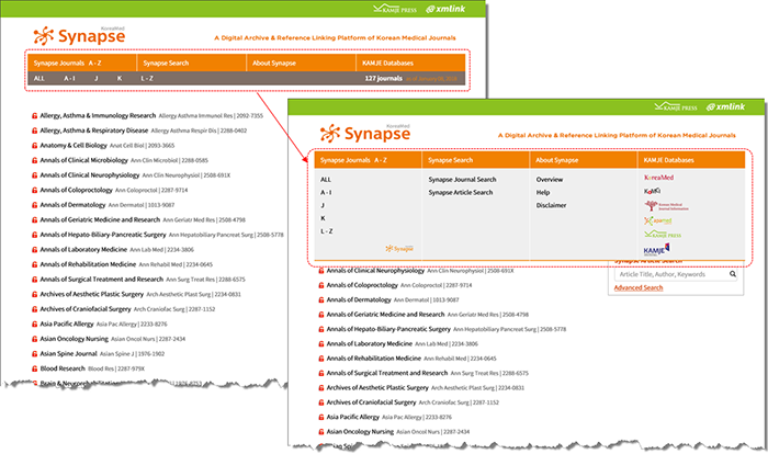 synapse-redesign-1.png (1060×627)